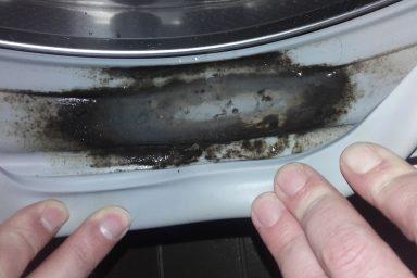 Jak usunąć pleśń w pralce