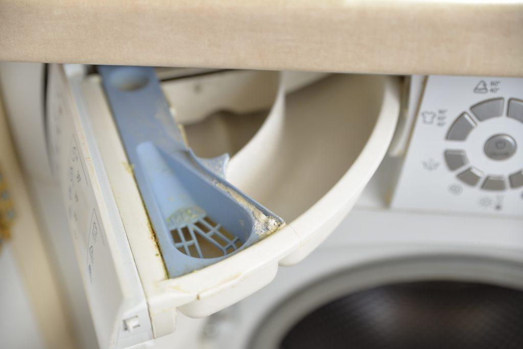 plesn w pralce w dozowniku na proszek