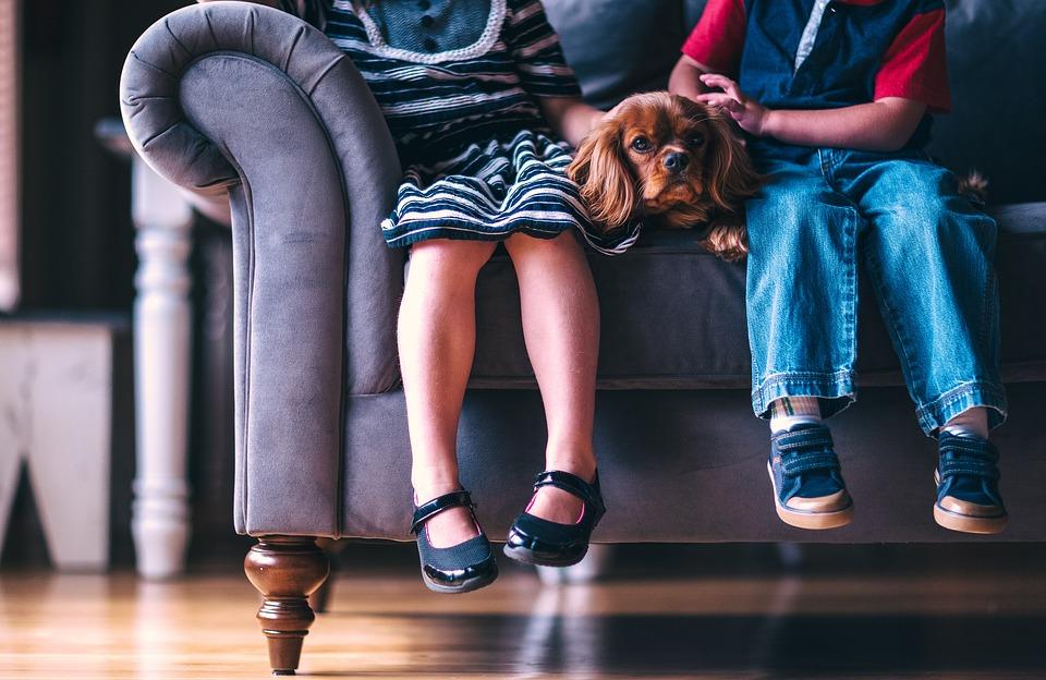 Sposoby na włosy na dywanie