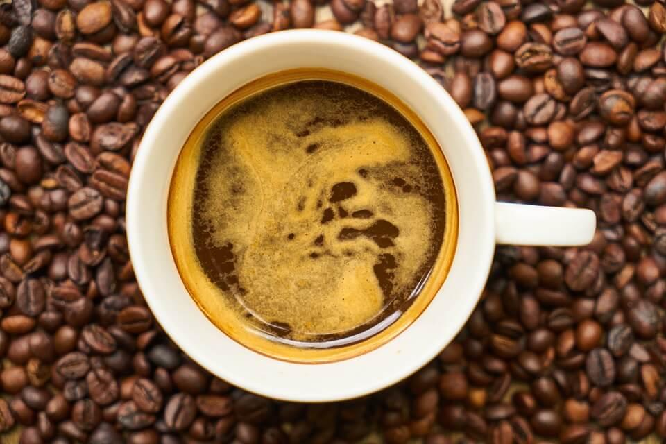 Autonomiczny młynek do kawy MKM 6003 Bosch – czy warto?