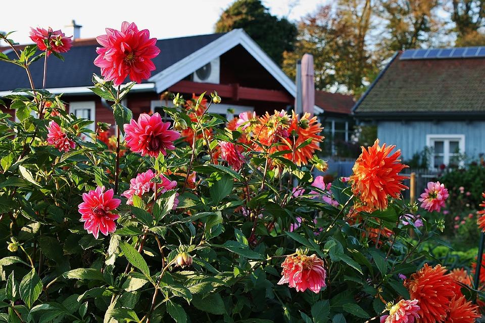 Zadbaj o swój ogródek na wiosnę!