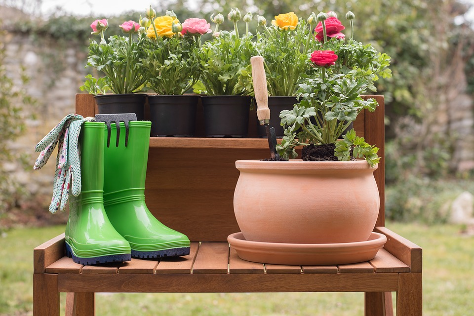 Sadzenie kwiatów to bardzo przyjemna część pielęgnacji ogródka