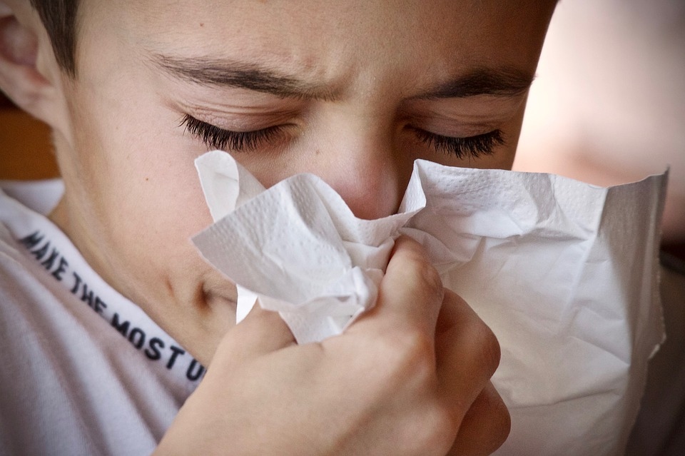Alergik w domu - jak zadbać o czystość?