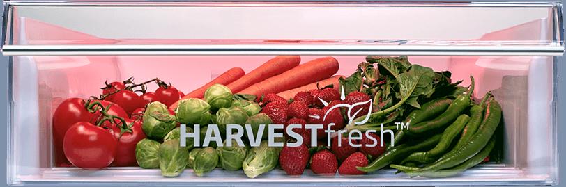 Beko HarvestFresh - cykl słoneczny w Twojej lodówce