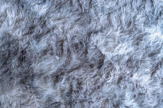 preparat do prania dywanów i tapicerki Hotrega
