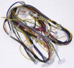Wiązka kabli do pralki Electrolux (1083933018)