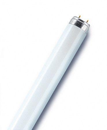 Świetlówka liniowa G13 36W OSRAM T8,0