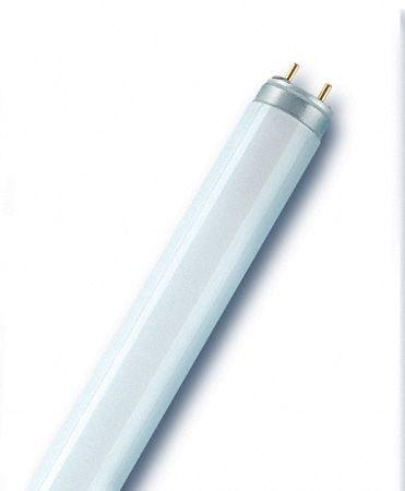 Świetlówka liniowa G13 T8,0