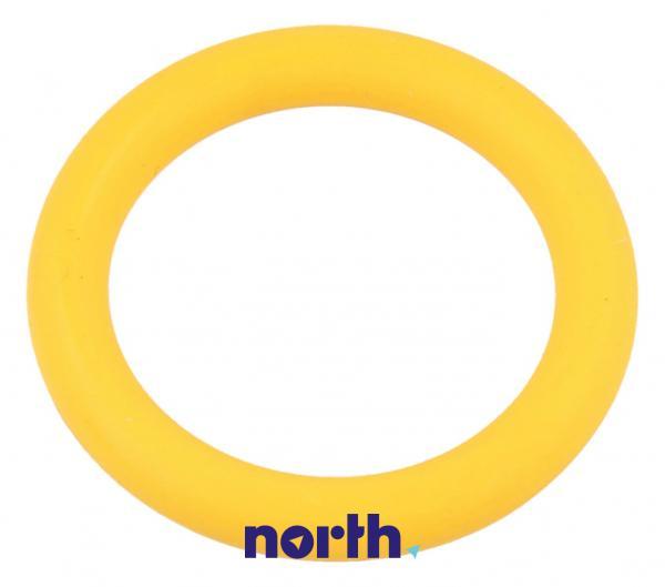 Oring | Uszczelka zaworu bezpieczeństwa do generatora pary 00600738,0